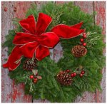 Cranberry Wreath $35.00